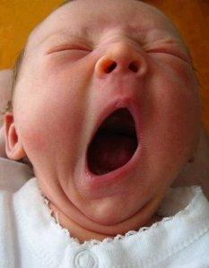 photo of yawning